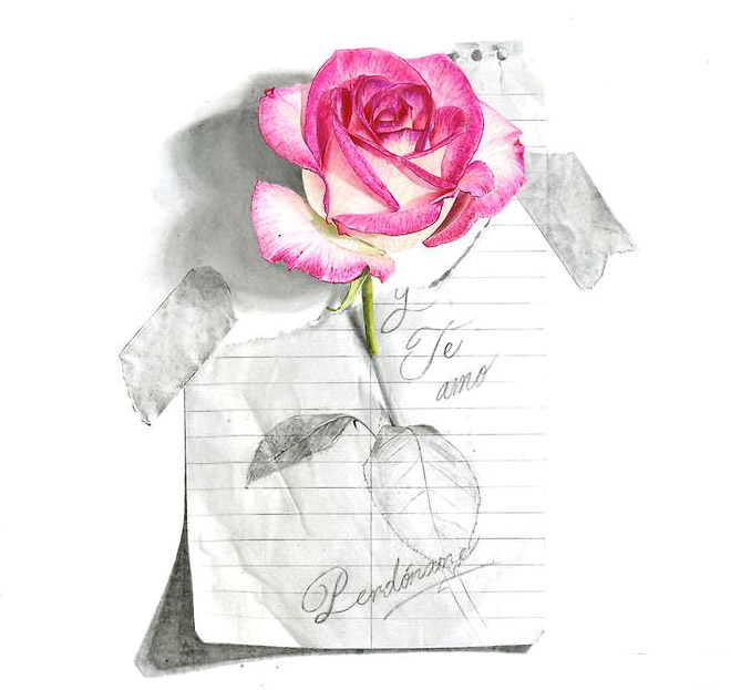 18-rose-realistic-color-pencil-drawing-by-abraham-falcon